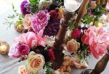 19th May 2014 Castiglion Del bosco Tuscany / Exclusive Dinner for Wedding Anniversary at Castiglion del Bosco, tuscany. Floral Design: La Rosa Canina / by La Rosa Canina FIRENZE