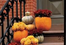 Fall Decorations / by Sylvia J. Heard