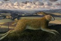 Hare's (painted & Illustrated) + Rabbits / by Eric Vose