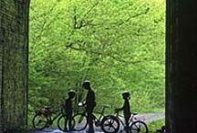 Rails to Trails in Area / Biking trails nearby. / by Appalachian School of Law