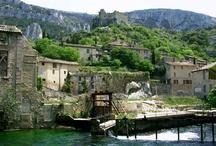Eaux de Provence  / by L'OCCITANE