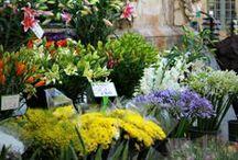 Flower Market / by L'OCCITANE