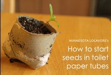 Seed Starting / #spring #seedstarting #seedsupplies / by Minnesota Locavore