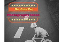 Pet photography / by Togally
