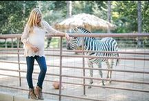 A Day At The Ranch / by PinkBlush Maternity