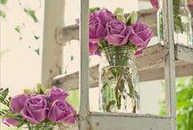 flowers  / by stephanie
