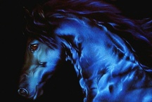 I Love Horses!!! / by Micki Sowell