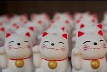 Lucky Cats / by Ellen Callahan