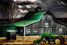 Barns / by Ann Vaughan