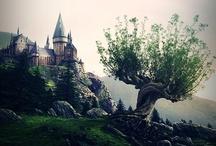 TV & MOVIE-The Harry Potter / by Vivienne H