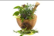 Herbs / by Jessie Krikac
