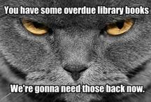 Library Cats! / by Charlotte Mecklenburg Library