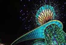 Gardens by the Bay, Singapore / by Grant Associates | Landscape Architects