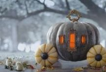 Halloween  / Halloween  / by michaelle sandefur