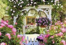 Gardens / by Darlene W.