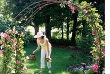 DIY &Tip - Garden & Outdoor / by Michal Rozen Bar