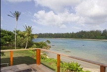 Hawaii Living / by Smith Brothers