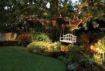 Lighting Systems / by Baldi Gardens, Inc.
