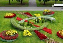 Interesting Landscapes / by Baldi Gardens, Inc.