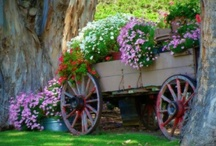 FLOWERS AND GARDENS MAKE ME SMILE! / by Vickie Johnson