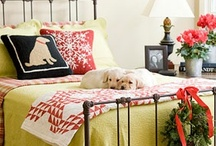 holiday decorating ideas / by mable rockwell