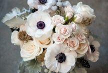 Flowers / by Liz Cockings