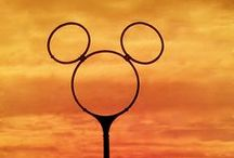Disney / °O° Everything Disney °O° / by Ellen Reece
