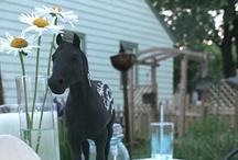 Wedding Ideas - Quirky & fun / by Serene H