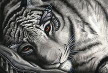Artwork~Felines / by Ephphatha