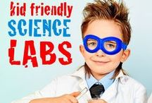 Kids Science Fair Project Ideas / by Catherine Murphy