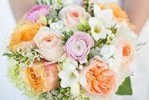 Bouquets / by WeddingWoo