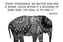 Wisdom / by Elizabeth Lauren
