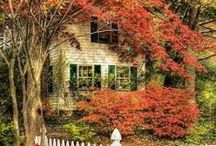 October Cottage / cottage living in the fall / by Patty Hoffman