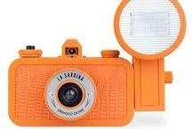 Orange / by Laura Billingham Photography