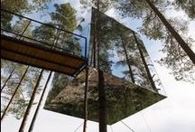 Casas en los árboles / by Danifotografo