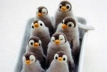 Pingüinillos / by Danifotografo