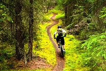 Tread & Trails / Peddle, Bank, Break, repeat, mountain bike for life  / by Roclistic Clothing