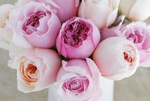 flowers / by Ramona Branson