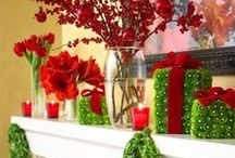 Decorating for Christmas / by Donna Robertson