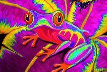 ARTWORK (FISH-FROGS-WATER CREATURES) / by Karen Baker