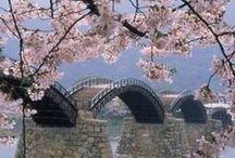 Japan / by sabrina lainner
