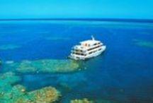 Coral Princess Cruises / Address:  24 Redden Street , Cairns  QLD 4870 Phone:  +61 7 4040 9999 Email:  cruise@coralprincess.com.au Web:  www.coralprincess.com.au / by Queensland Ecotourism Directory