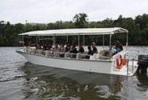 Daintree River Cruise Centre / Address:  Mossman-Daintree Road, Daintree  QLD 4873 Phone:  +61 7 4098 6115 Email:  daintreecruisecentr@bigpond.com Web:  www.daintreerivercruisecentre.com.au / by Queensland Ecotourism Directory