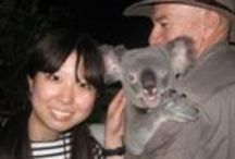 Doki Doki Tours / Address:  9 Plath Close, Cairns  QLD 4870 Phone:  +61 7 4031 4141 or 1 800 242 500 Email:  info@dokidokitours.com Web:  www.dokidokitours.com / by Queensland Ecotourism Directory