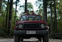 DropBear Adventures / Address:  66 Noosa Drive, Noosa Heads  QLD 4567 Phone:  0408 072 925 Email:  info@dropbearadventures.com.au Web:  www.dropbearadventures.com.au / by Queensland Ecotourism Directory