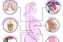 Pregnancy Info / #Pregnancy tips and info / by Baby Ladies