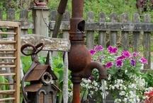 Garden / by Margaret Clarke