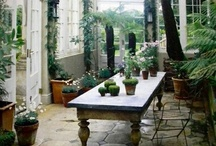 home ideas and inspiration / by mary