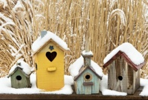 """For the Birds"" / Birdhouses and birdbaths....love my feathered friends! / by Katie Clemens"