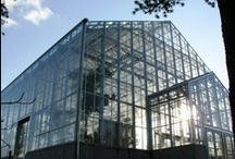Commercial Greenhouse Construction / Whether you are building a new greenhouse structure, expanding your existing greenhouse or just need replacement parts the Rough Brothers Commercial Division can help you / by Rough Brothers Inc